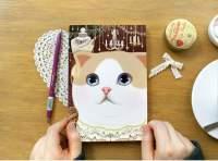 Блокноты своими руками с кошками